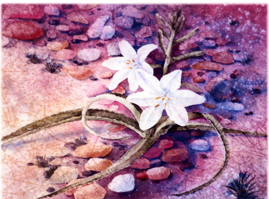 Flower Painting - Desert Lily by Florence Unkeless