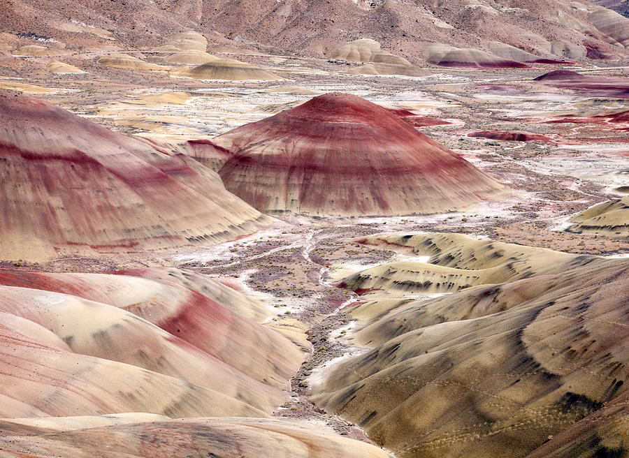 Hills Photograph - Desert Palette by Mike  Dawson