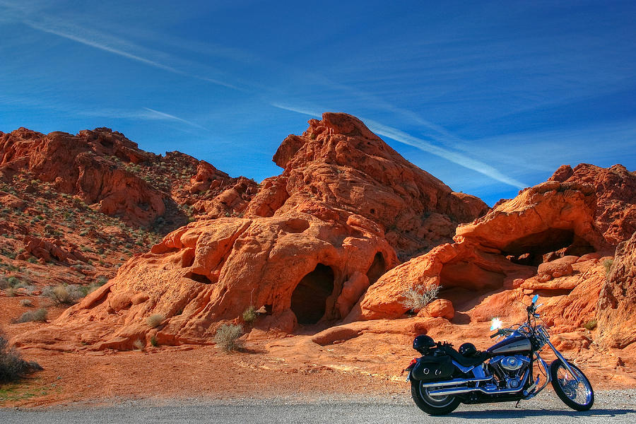 Desert Photograph - Desert Rider by Charles Warren