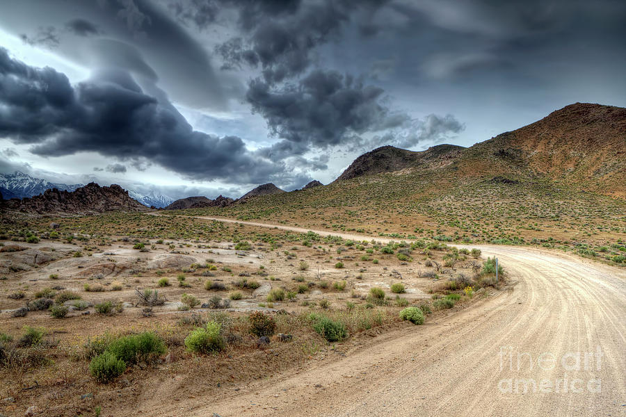 Desert Photograph - Desert Road by Rick Mann