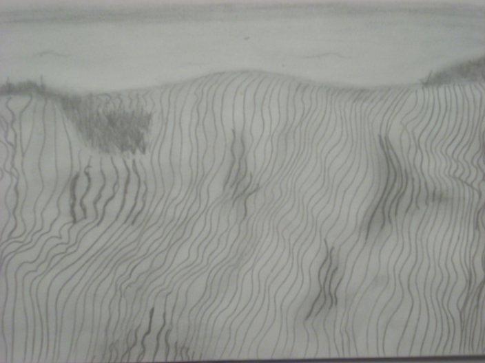Desert Drawing - Desert by Samantha  Howe