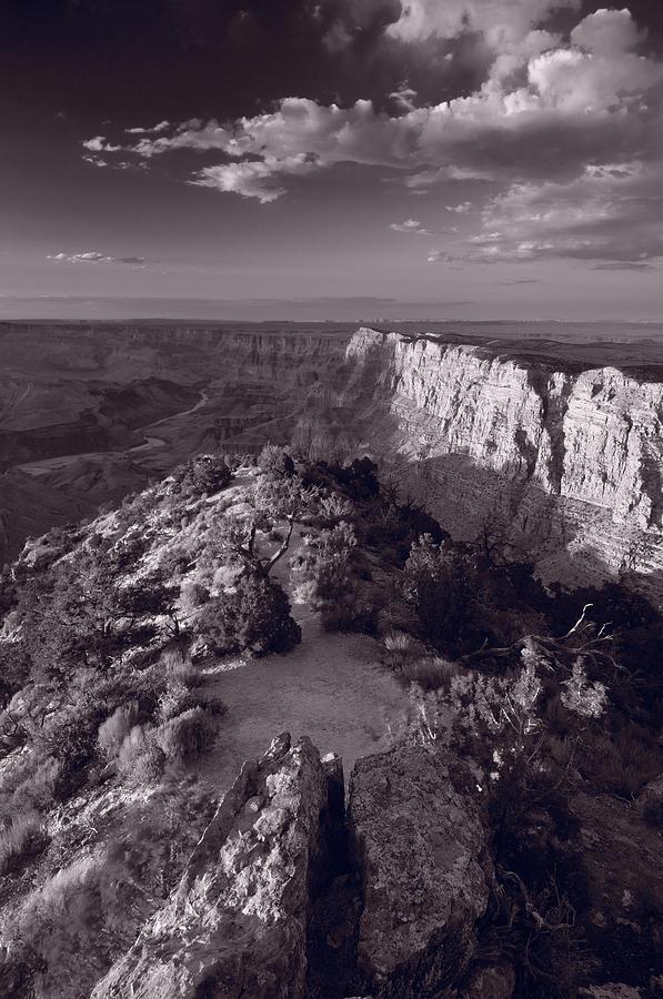Arizona Photograph - Desert View At Grand Canyon Arizona Bw by Steve Gadomski