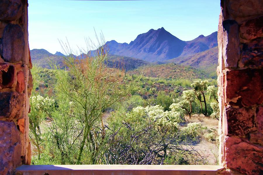 Desert View by Kathy Bassett