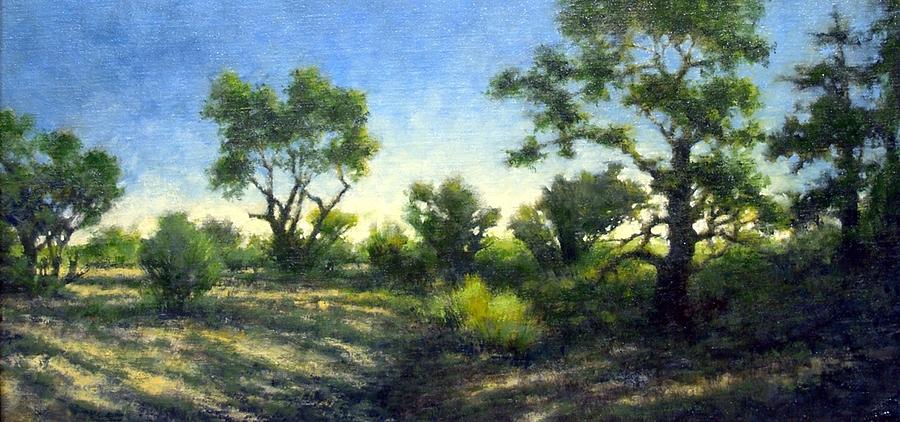 Quiet Painting - Desert Wash by Jim Gola