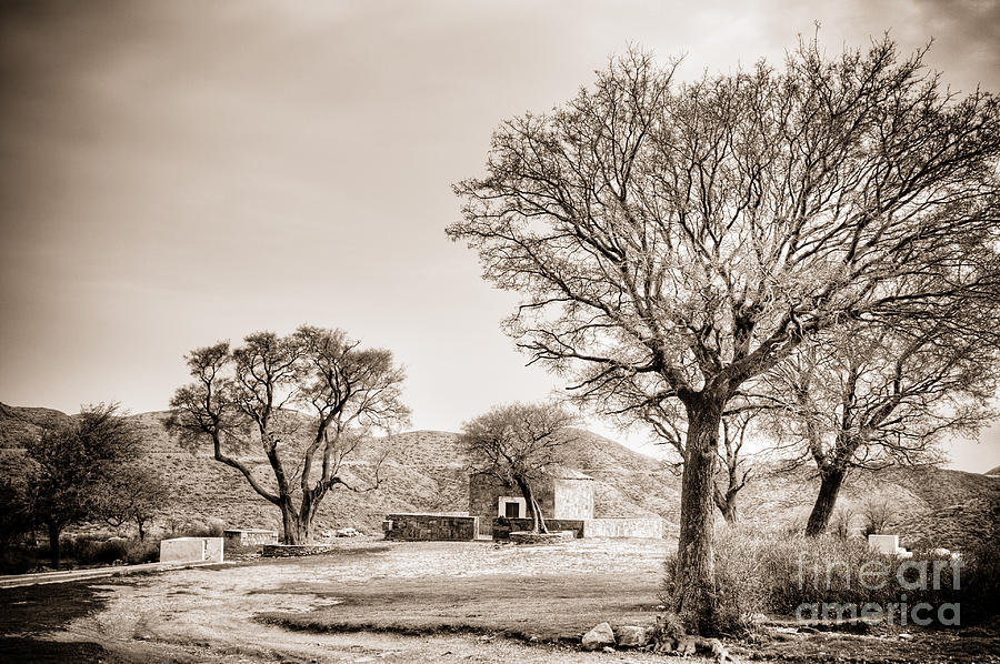 Desolate Photograph by Gabriela Insuratelu