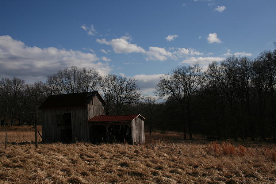 Barn Photograph - Desolate by Julie Bromley