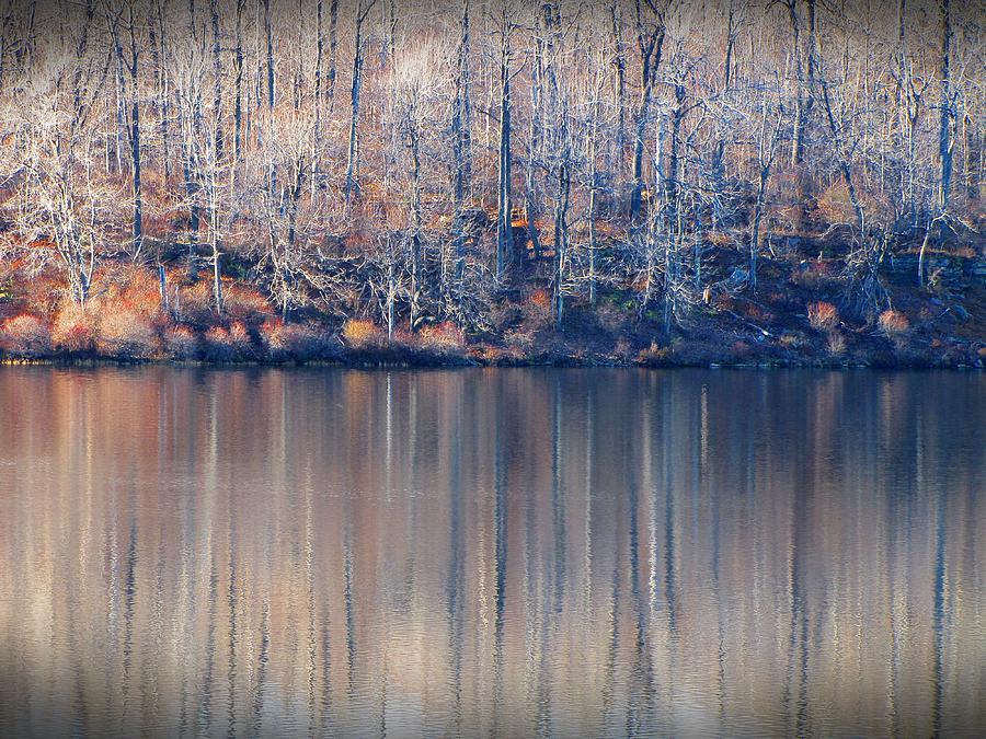 State Park Photograph - Desolate Splendor by David Dehner