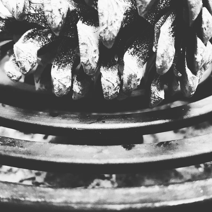 Stove Photograph - Desultory Pine Cone On Old Stove by Daniel Donche