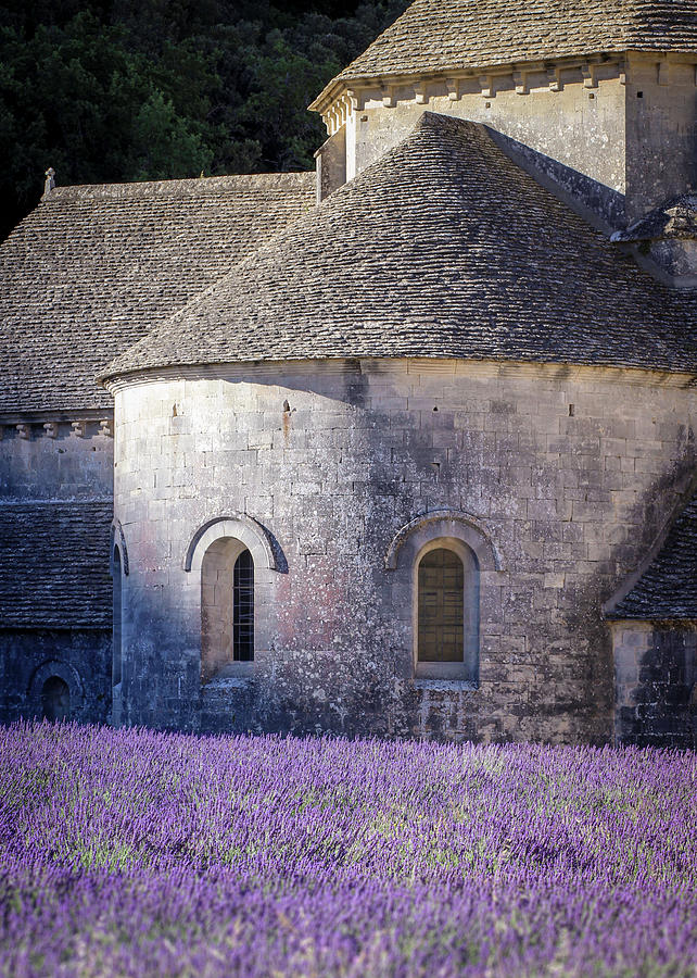 Provence Photograph - Detail of Abbaye Senanque, church in Provence, Southern France, surrounded by lavender by Dalibor Hanzal