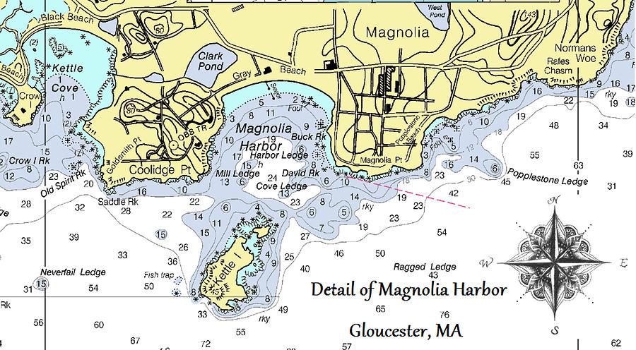 Detail of Magnolia Harbor by Jeannine Selig