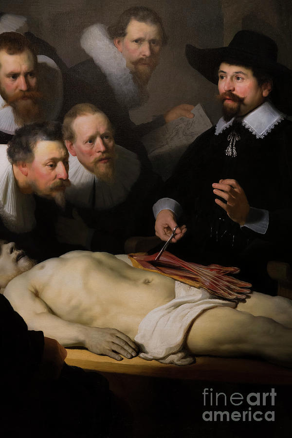 Detail Of The Anatomy Lesson Of Dr Nicholas Tulp, By Rembrandt ...