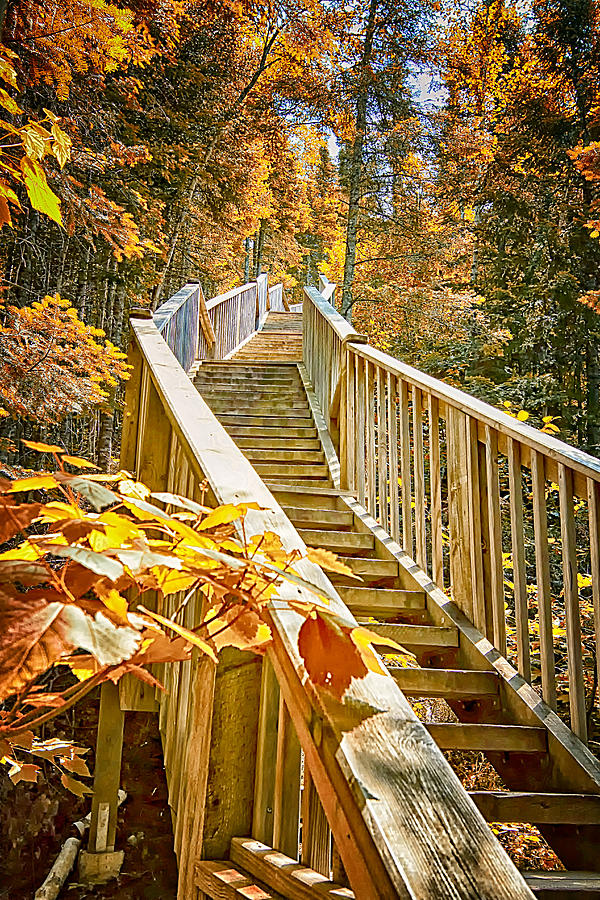 Judge Magney State Park Photograph - Devils Kettle Stairway by Linda Tiepelman