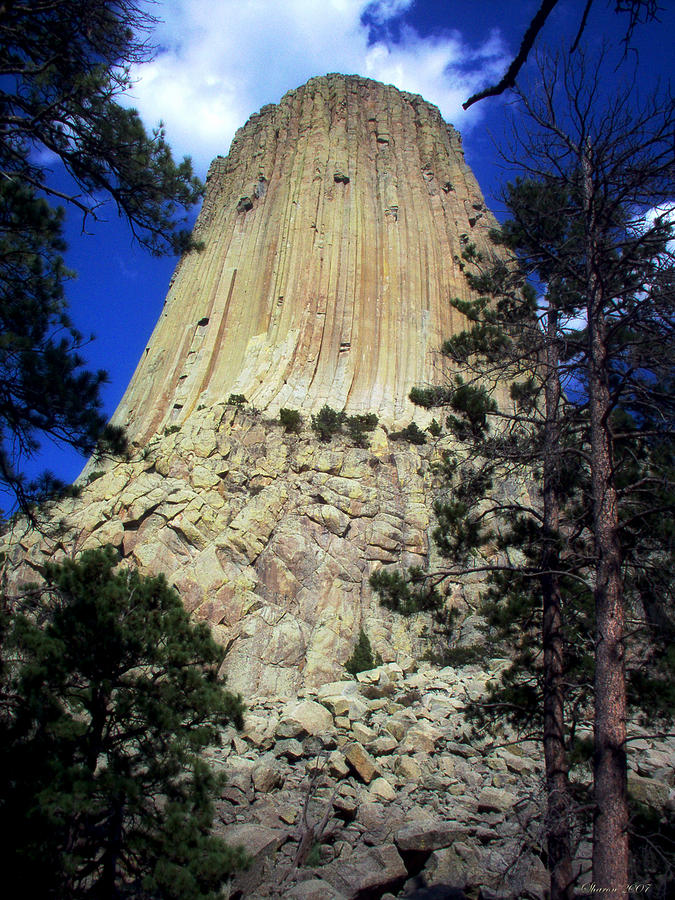 Landscape Photograph - Devils Tower by Sharon Hendrickson