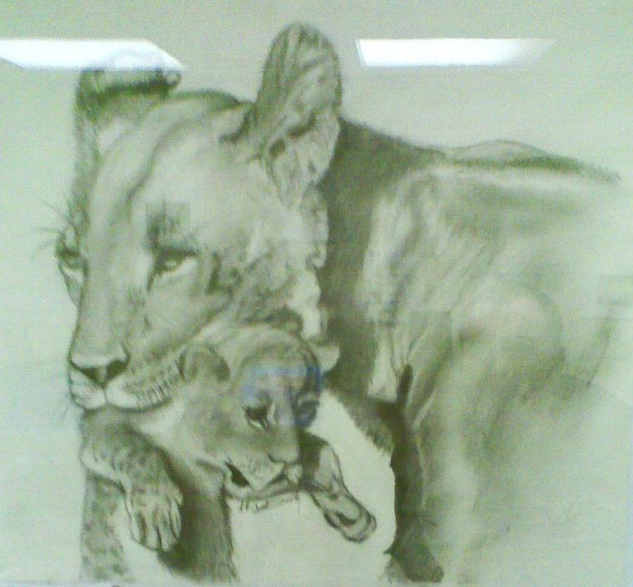 Animal Drawing - Devotion by Andrew Davies