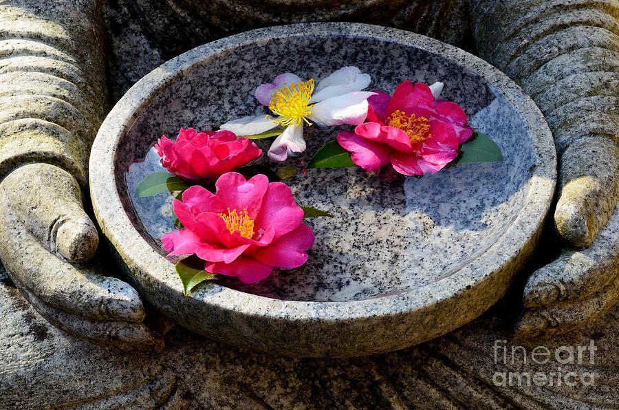 Buddha Photograph - Devotional by Dean Harte
