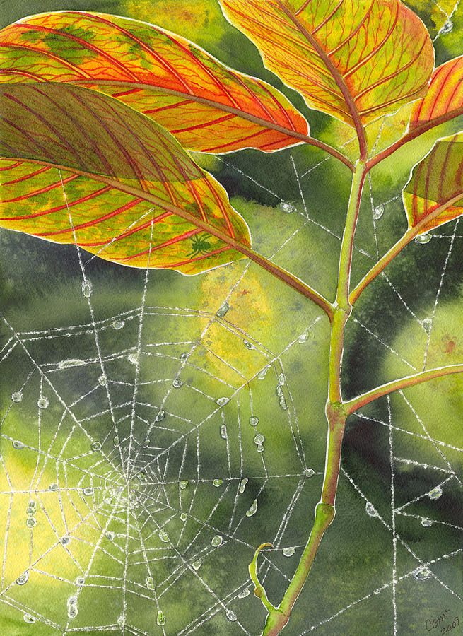 Web Painting - Dew Drop by Catherine G McElroy