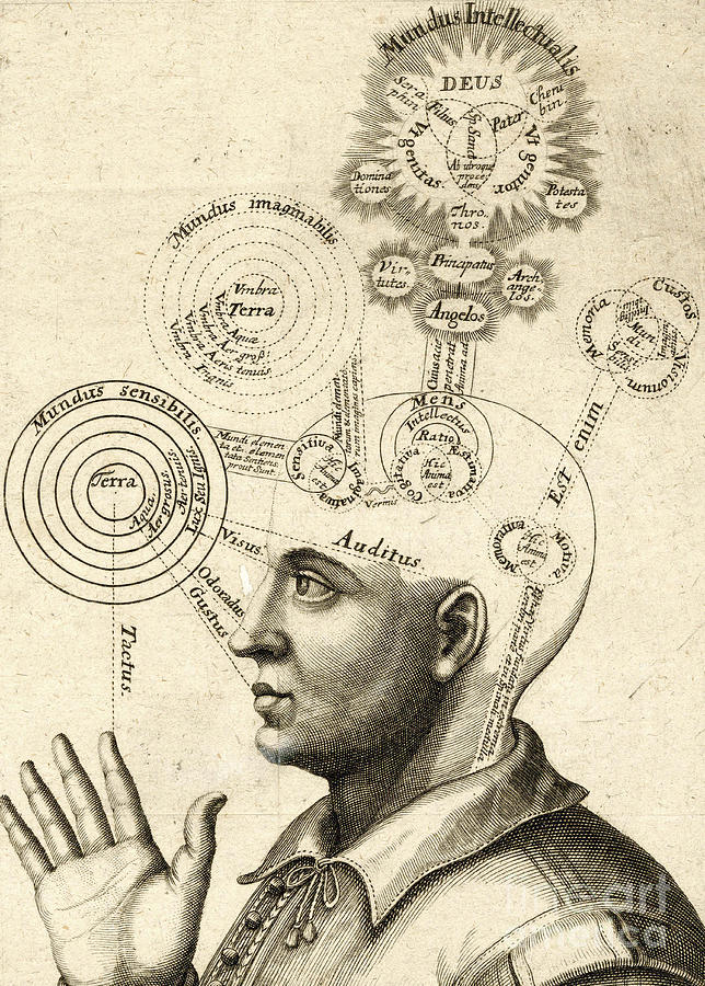 Diagram Of Human Thought And The Four Senses Drawing By