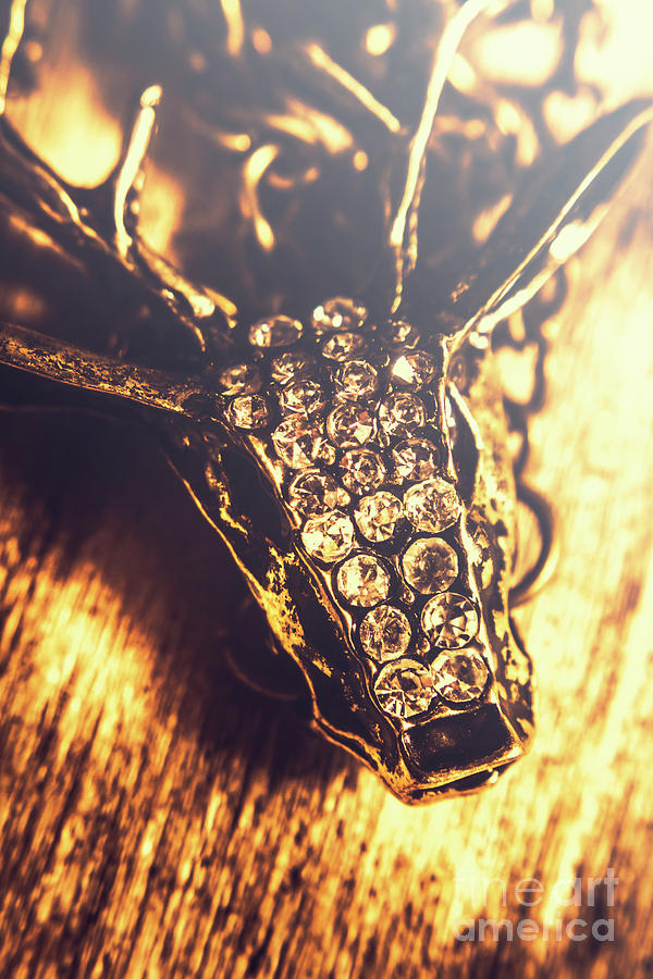 Deer Photograph - Diamond Encrusted Wildlife Bracelet by Jorgo Photography - Wall Art Gallery
