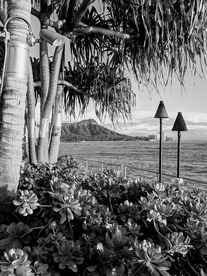 Diamond Head Photograph - Diamond Head In Black And White by Jason Keinigs
