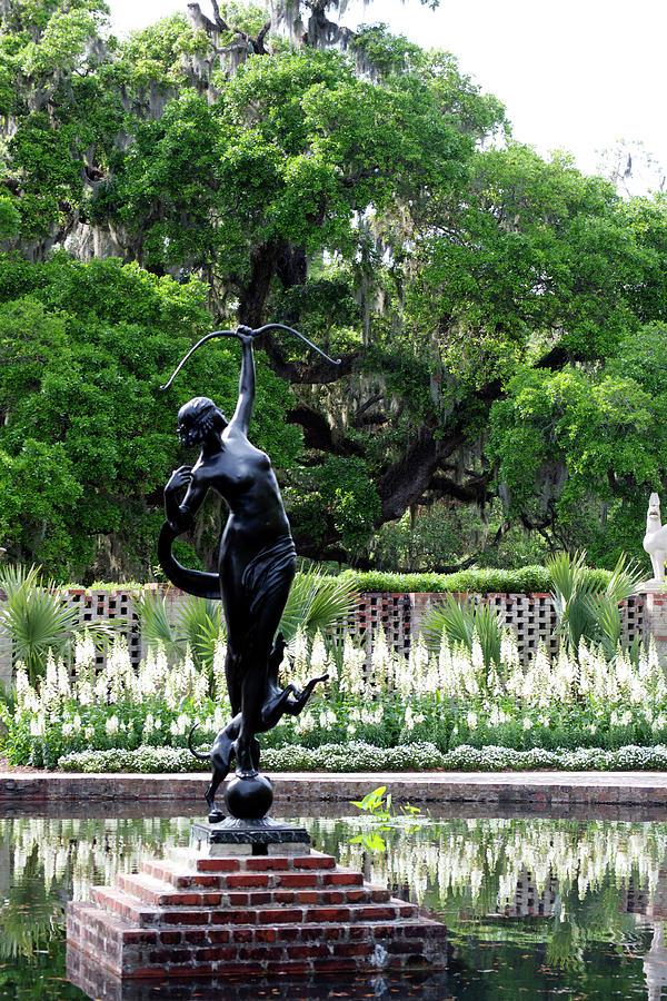 Diana Photograph - Dianas Garden by Tara Doerr