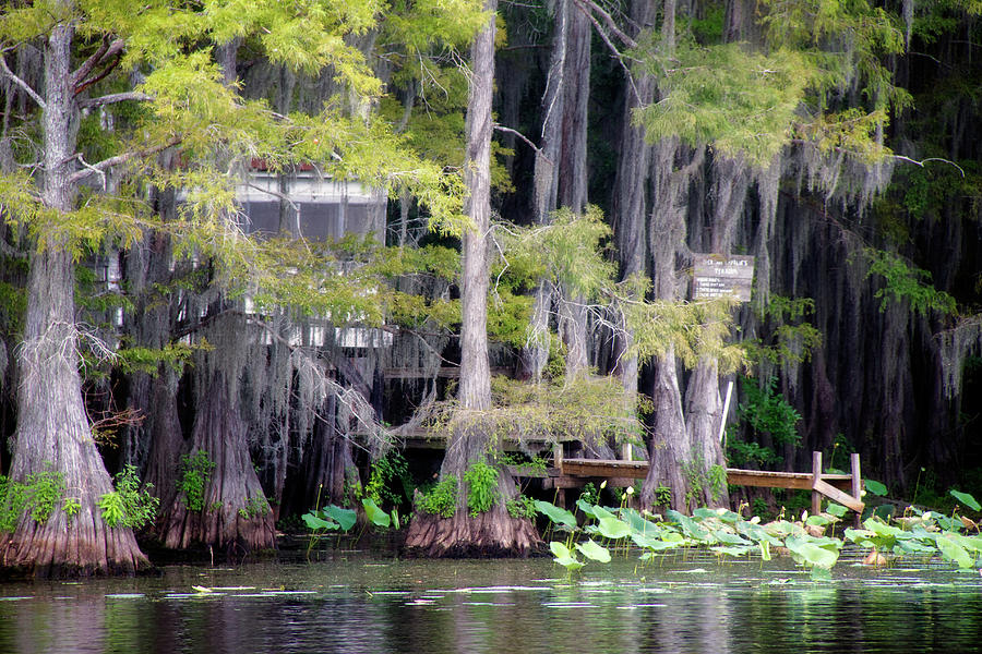 Bayou Photograph - Dick And Charlies Tea Room by Lana Trussell