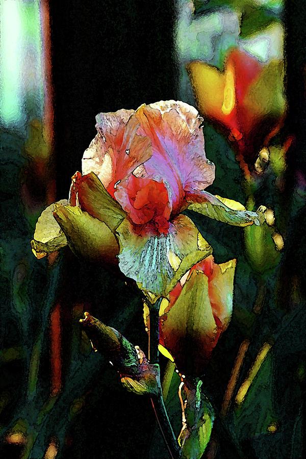 Digital Painting Photograph - Digital Painting Vibrant Iris 6764 Dp_2 by Steven Ward