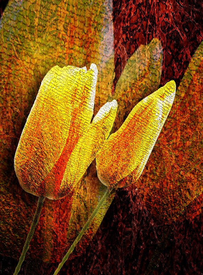 3d Photograph - Digital Tulips by Svetlana Sewell