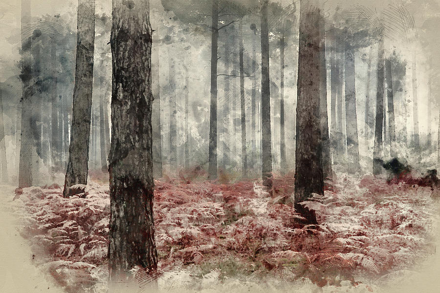 digital watercolor painting of pine forest autumn fall landscape photograph by matthew gibson digital watercolor painting of pine forest autumn fall landscape by matthew gibson