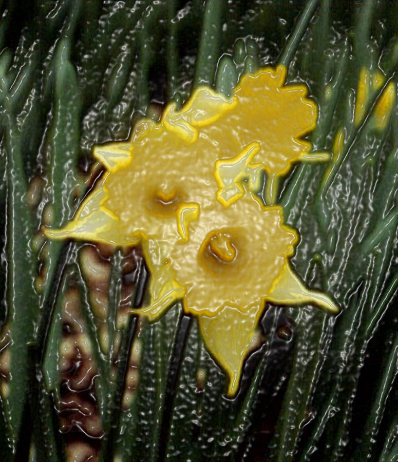 Daffodils Digital Art - Dimensional Daffodils by Wide Awake Arts