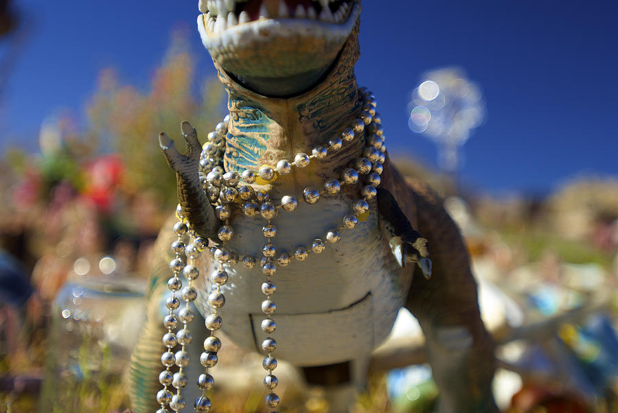 Close-up Photograph - Dino Diva by DRK Studios