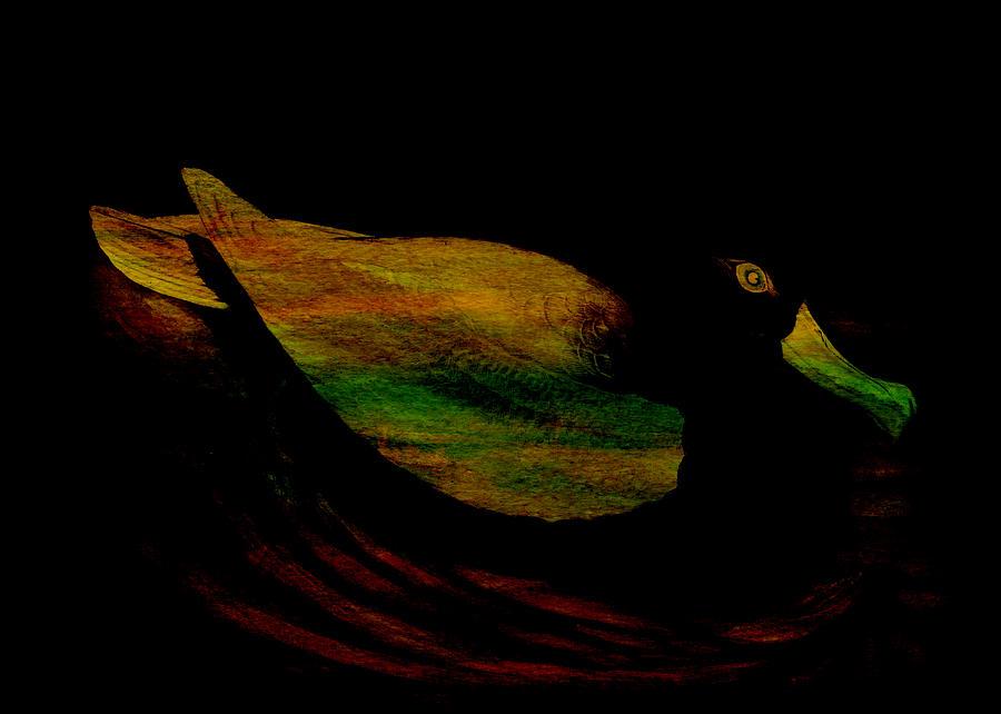 Albatross Digital Art - Diomedea by Sarah Vernon