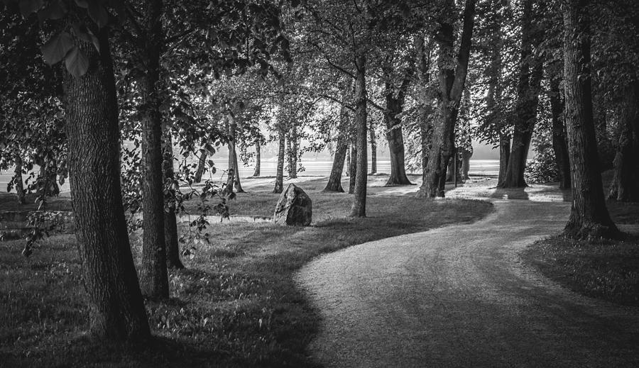 Matti Ollikainen Photograph - Directors by Matti Ollikainen