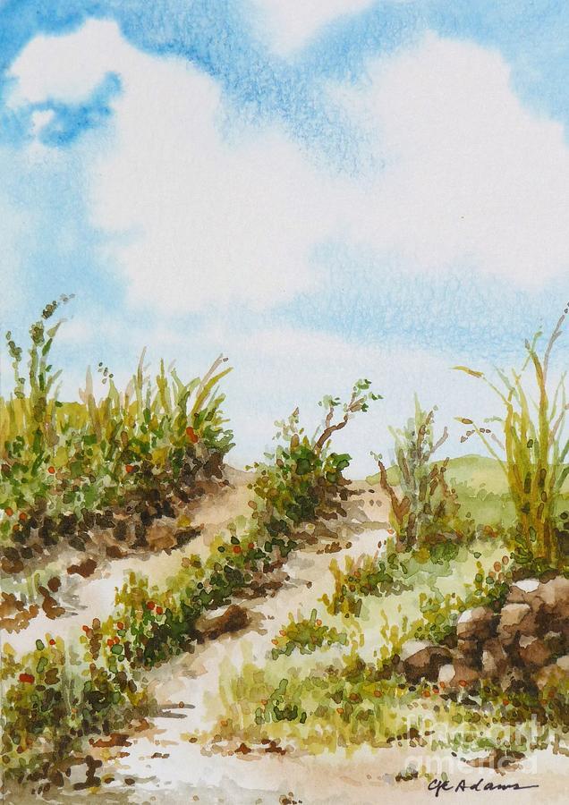 Dirt Road #2 by CHERYL EMERSON ADAMS