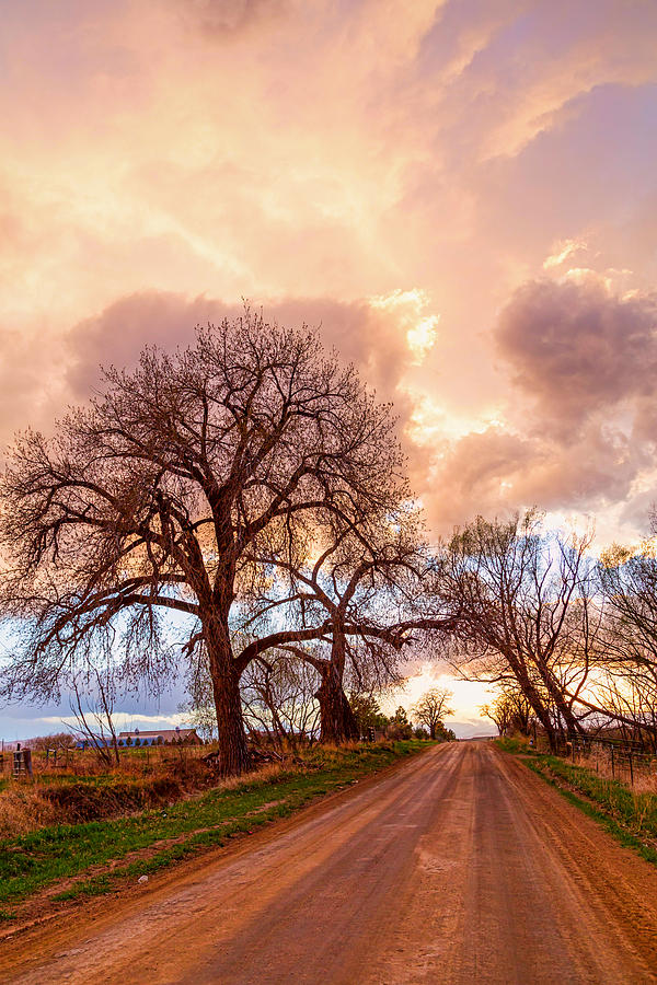 Dirt Road Cloud Cruising Photograph