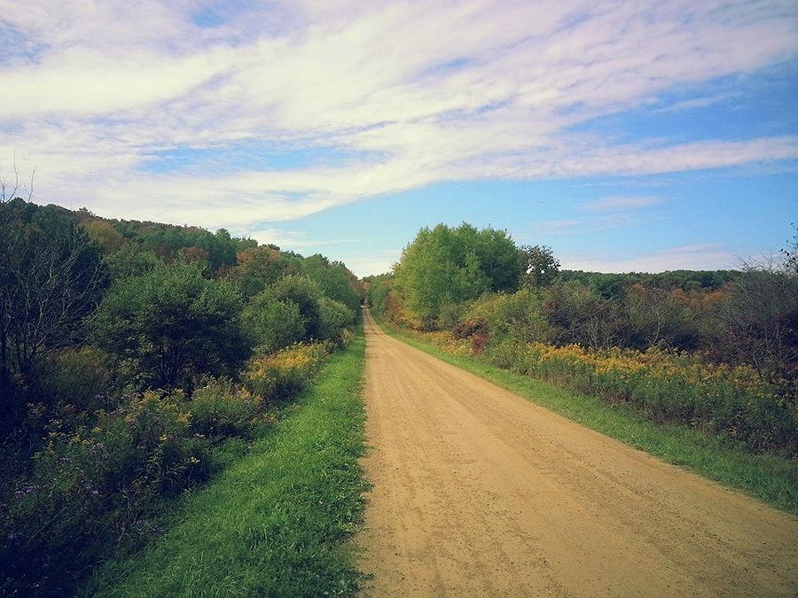 Landscape Photograph - Dirt Road Life by Brian Groves