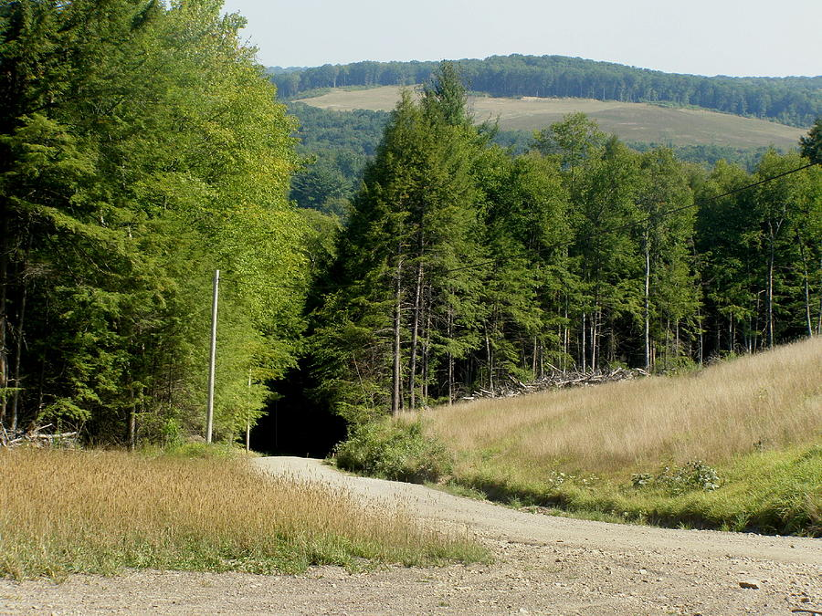 Mountains Photograph - Dirt Road Through The Mountains by Jeanette Oberholtzer