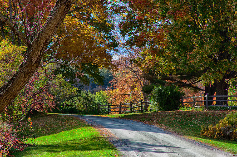 Autumn Photograph - Dirt Road Through Vermont Fall Foliage by Jeff Folger