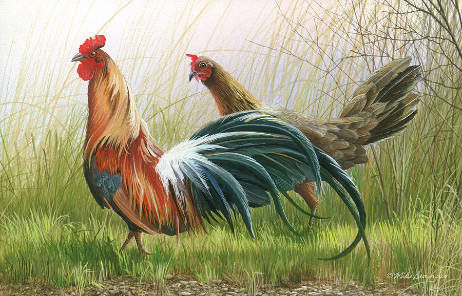 Rooster Painting - Disagreement by Mike Brown