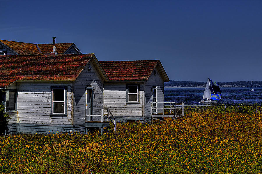 Discovery Park Photograph - Discovery Park Homes by David Patterson