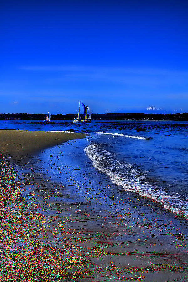 Discovery Park Photograph - Discovery Park North Beach by David Patterson