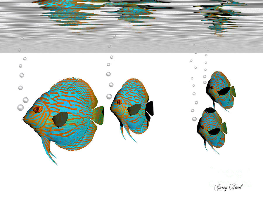 Animal Painting - Discus Fish by Corey Ford