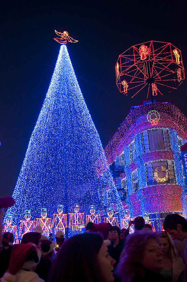 Disney Studios Photograph - Disney Christmas Lights Spectacle by Charles  Ridgway