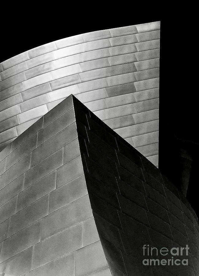Disney Concert Hall Black and White by Michael Cinnamond