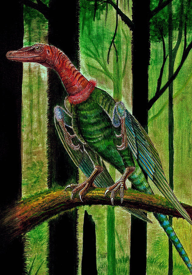 Birds Painting - Display - Rahonavis ostromi by Mihai Dumbrava