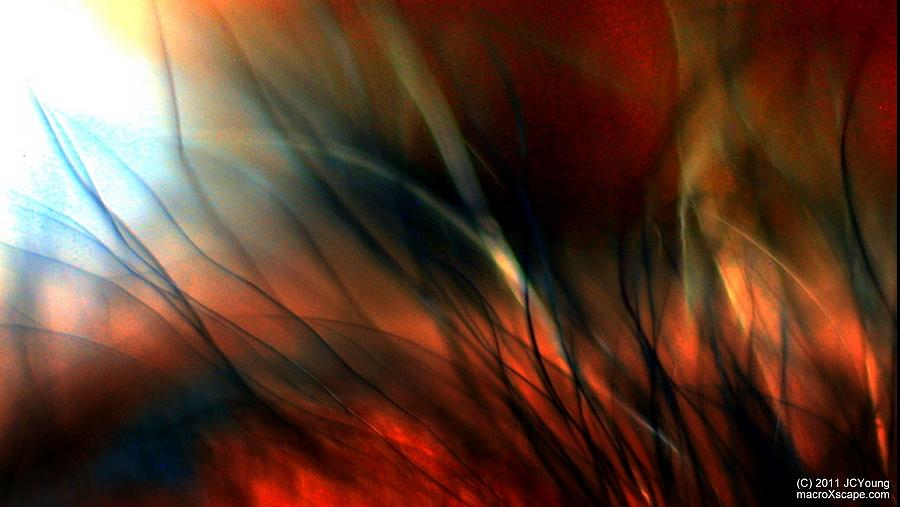 Impressionist Photograph - Distant Fire by JCYoung MacroXscape