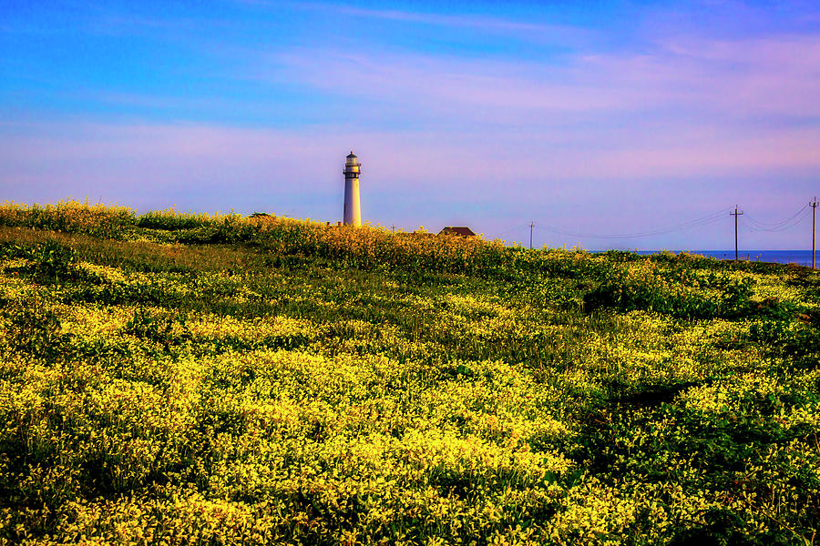 Pigeon Point Lighthouse Photograph - Distant Lighthouse by Garry Gay