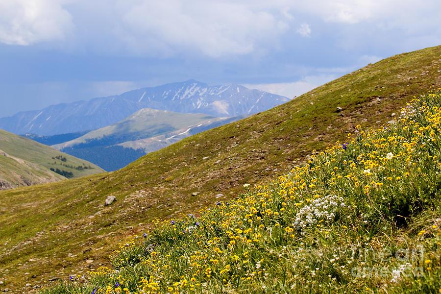 Distant Peak Near Cottonwood Pass Colorado Photograph