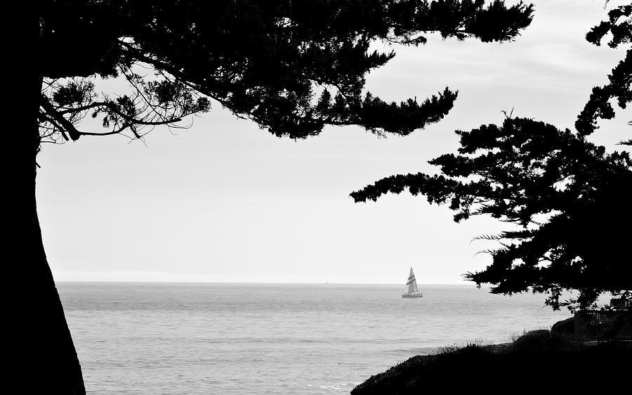 Distant Sails Photograph