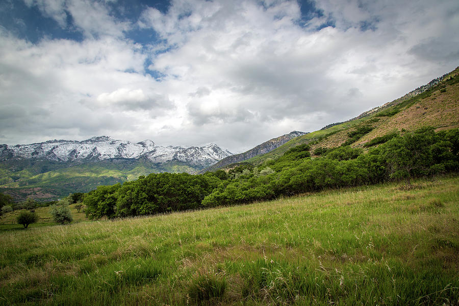 Mountains Photograph - Distant Snow-capped Mountains by Dan Pearce