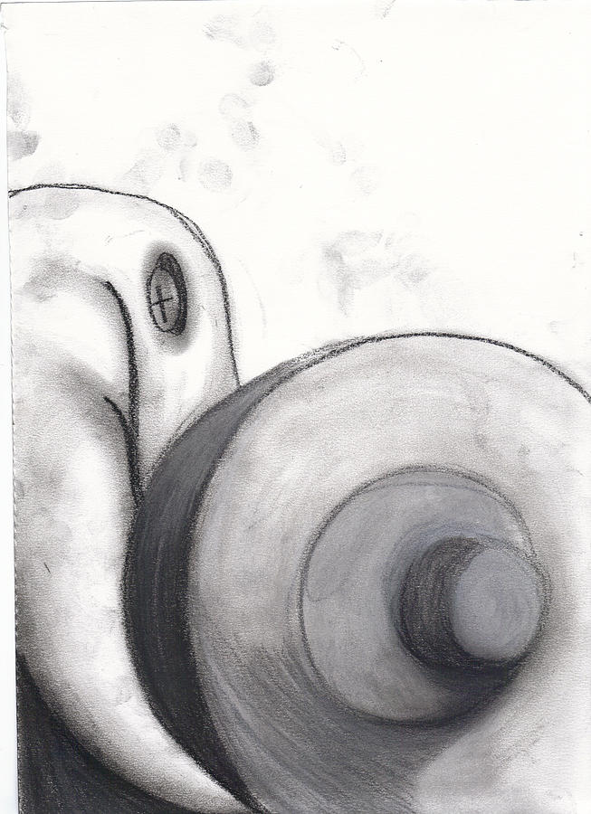 Still Life Drawing - Distorted Series 1 by Dan Fluet